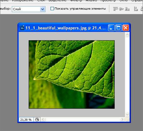 как добавить на картинку текст в фотошопе